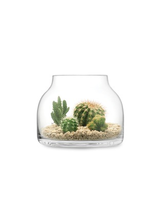 - LSA - Plant漏斗形玻璃花盆