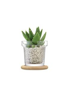 LSA Plant玻璃花盆橡木托盘两件套